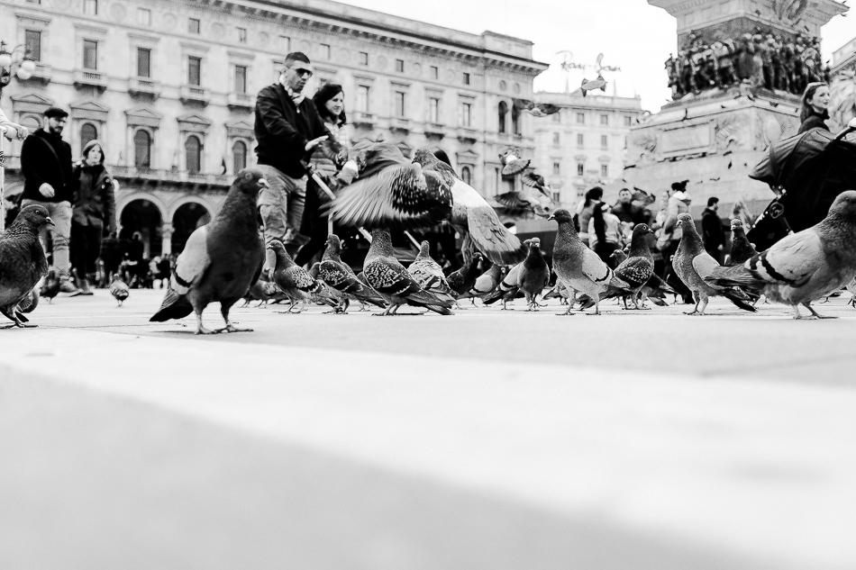 Mailand-2015-84-web
